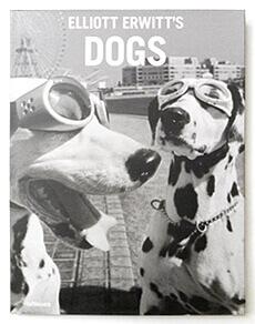 Dogs | Elliott Erwitt