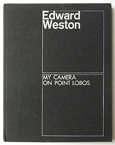 My Camera On Point Lobos | Edward Weston