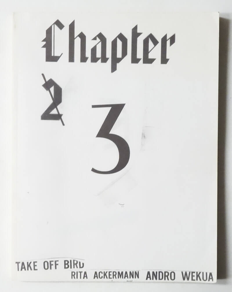 Chapter 3 | Rita Ackermann, Andro Wekua
