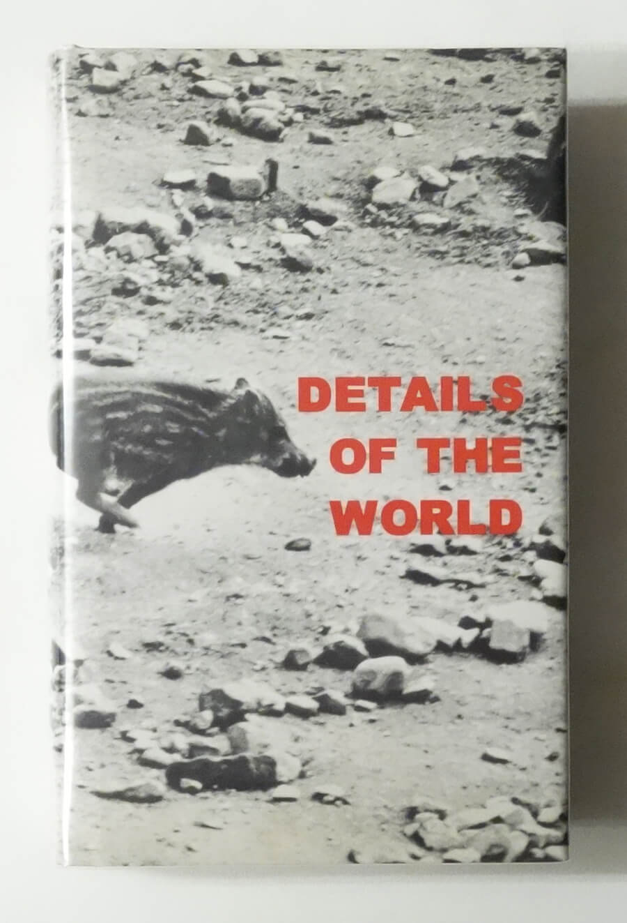 Details of the World | Sophie Ristelhueber