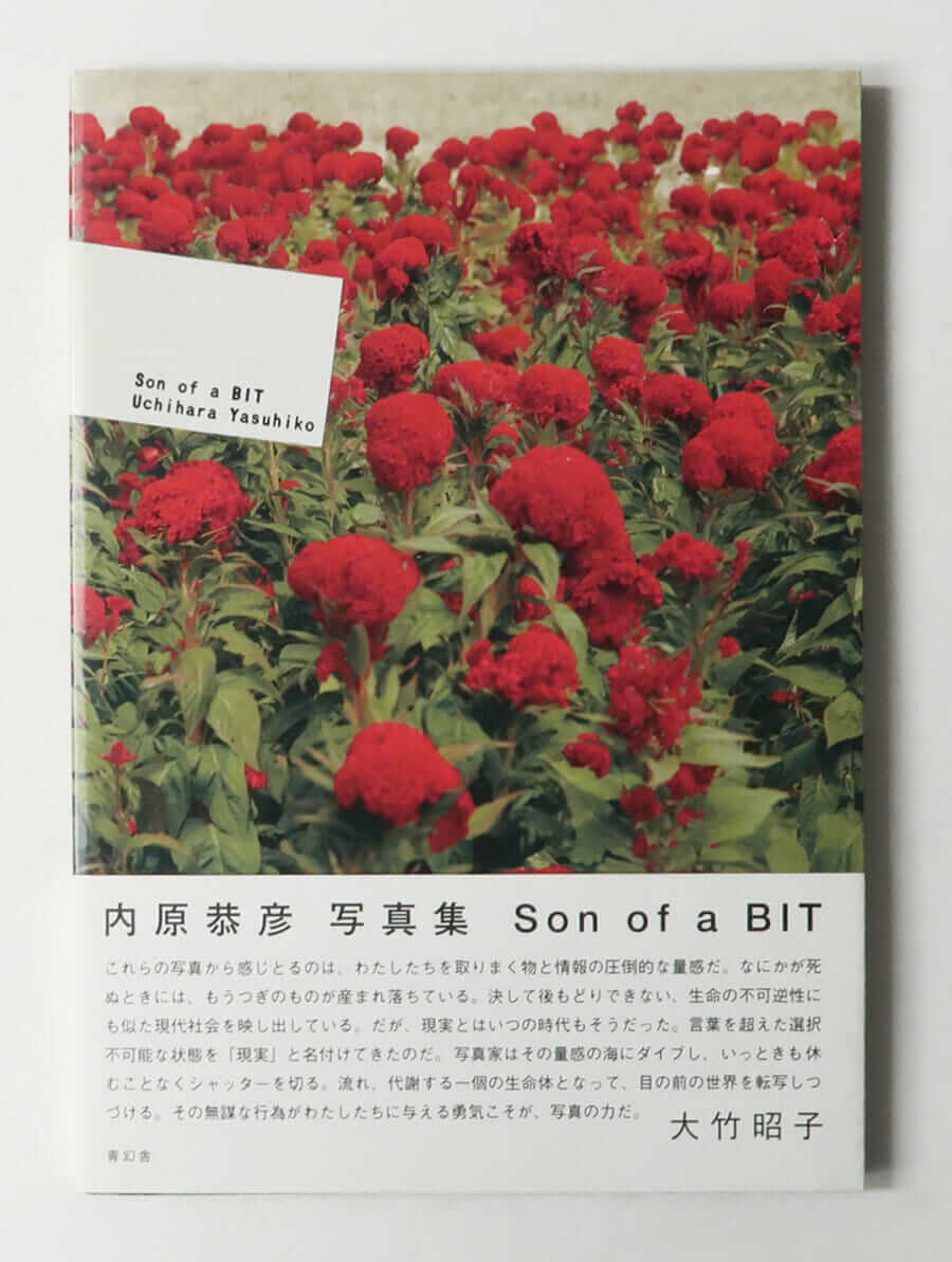 Son of a BIT 内原恭彦